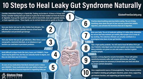 steps  heal leaky gut syndrome naturally gluten