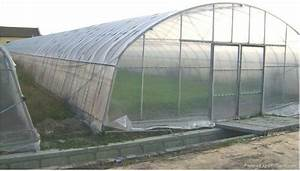 Agriculture Single Tunnel Greenhouse    Cold Frame