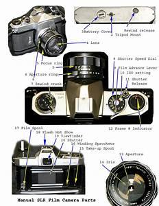 Parts Of Slr Camera