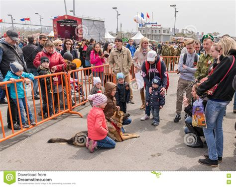 how do people celebrate programmer day in russia children photographed with dogs editorial stock image image 71119489
