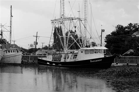 American Shrimp Boats For Sale by Shrimp Boat Buccaneer In Westwego La Photograph By Adrian
