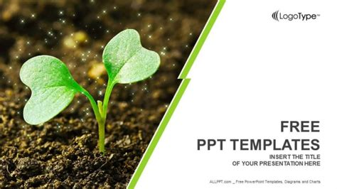 young plant sprouting powerpoint templates