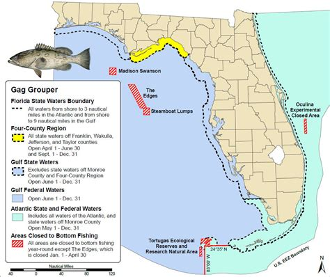 gag grouper fishing gulf season waters federal state mexico open recreational map regulations saltwater ocala june most across soon opens