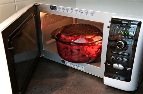 cuisiner pour chien cuisiner au micro ondes pour chien baikasblog