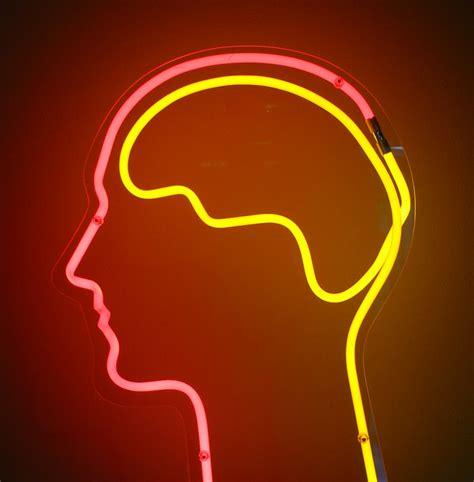 brain foods support close