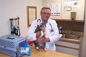 Brenner Animal Hospital - 17 Photos - Veterinarians ...