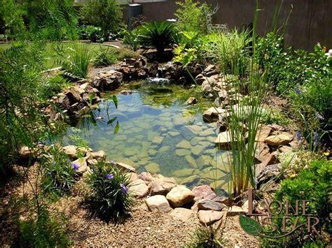 natural koi pond  waterfall  tropical plants www