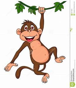Cute Monkey Hanging Royalty Free Stock Images - Image ...