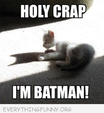 Holy Crap Meme - holy crap batman meme www pixshark com images galleries with a bite