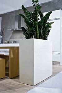 Pflanztopf Für Palmen : moderne zimmerpflanzen als frische deko f rs zuhause ~ Lizthompson.info Haus und Dekorationen