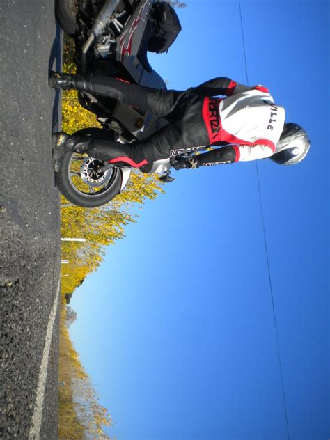 Elite One-piece Motorcycle Racing Leathers (custom) Elite