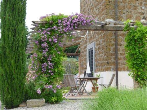 plantes grimpantes pour pergola plante grimpante ombre pour pergola de jardin