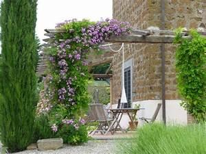 Plante grimpante ombre pour pergola de jardin for Comment monter une tonnelle de jardin 3 plante grimpante ombre pour pergola de jardin