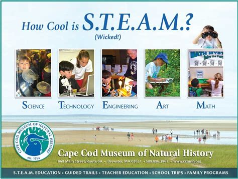 Steam Education, Stem Education, Steam Teacher Training