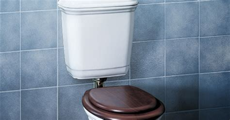 Modecor Toilet Suites: Caroma Vintage Connector Toilet Suite
