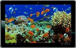 Download Killer Fish 3D Live wallpaper for android, Killer ...