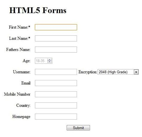 html5 input types