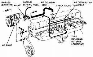 Chevy 4 3 Smog Pump Diagram