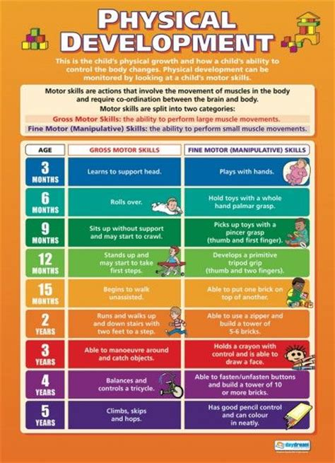 physical development in preschoolers physical development child development educational 230