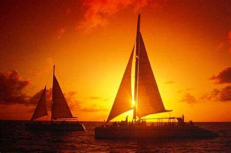 Aruba Sunset Catamaran Cruise Reviews by The 15 Best Things To Do In Aruba 2018 With Photos