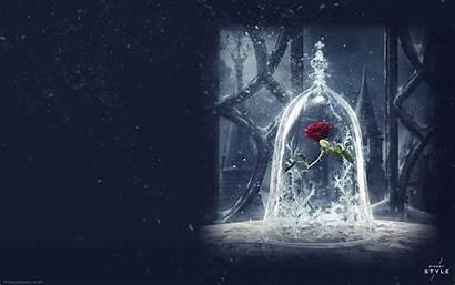 Beast Beauty Rose Disney Wallpapers Background Magic