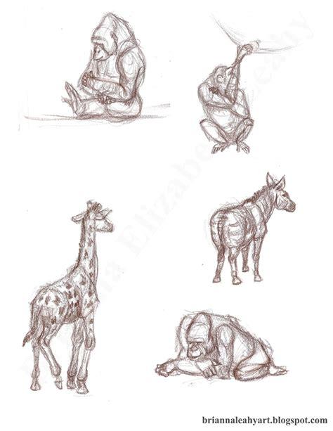 brianna leahy art  animal drawing los angeles zoo