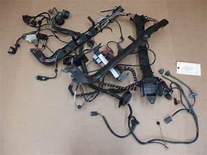 99 Carrera 911 Porsche 996 Coupe Engine Wiring Harness 99661017200 Rel  U2013 Parts Society