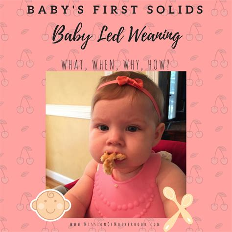 Baby Led Weaning Mission Of Motherhood