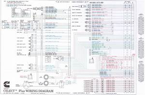 Beautiful N14 Celect Ecm Wiring Diagram Pictures