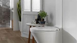 Deco Pour Wc : d co toilettes etroit ~ Teatrodelosmanantiales.com Idées de Décoration