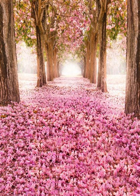 huayi beautiful pink flora backdrops  photography