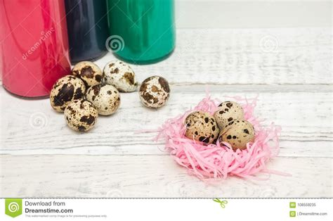 How to make paper box in this video i have teach you how to make paper boxes at home and the cheapest packet that quail farmer can afford without wasting. Quail Eggs In The Nest In The Background Stock Image ...