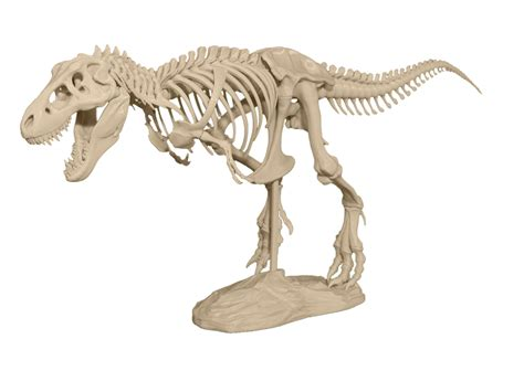 print    piece  rex skeleton