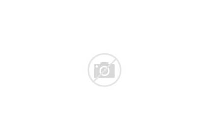 Indigenous Brazil Protest Brasilia Tribes Rights Land
