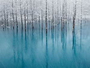 50+ Breathtaking National Geographic Nature Wallpapers [HD]