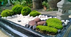 Zen Garten Miniatur : kleine g rten gestalten miniatur projekte mit viel fantasie ~ A.2002-acura-tl-radio.info Haus und Dekorationen