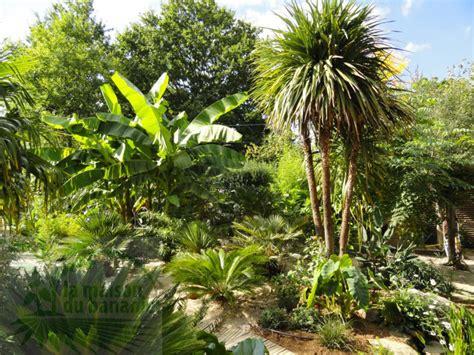 cr 233 ation de jardins p 233 pini 232 re la maison du bananier fleur creation de jardin