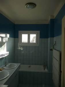 Fenetre Dans Douche : douche en remplacement de baignoire technique et implantation privil gier ~ Melissatoandfro.com Idées de Décoration