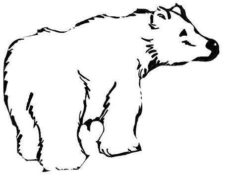 disegno orso polare az colorare