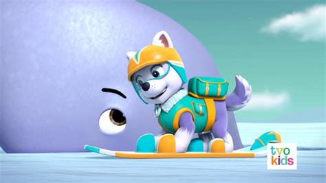 paw patrol images everest hd wallpaper  background