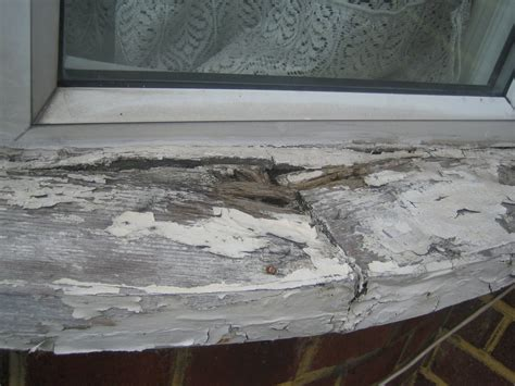 Wooden Window Sill Exterior by Replace An Exterior Rotten Wooden Window Sill Windows