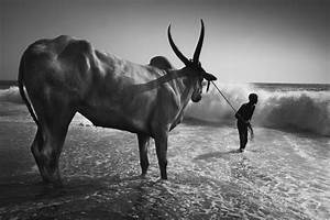 Street Photography in India - 50 Stunning Black & White ...