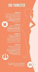 34 Best Pregnancy Weeks Infographic Images On Pinterest