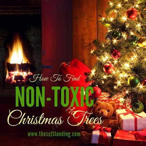 christmas tree not drinking water how to find a non toxic artificial tree