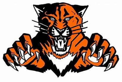 Wildcat Wildcats Libertyville Vector Lhs Clipart Athletics