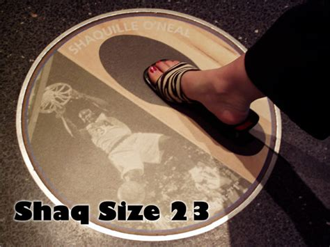 shaqs bed size shaquille o neal foot images search