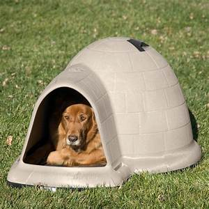 Petmate indigo dog house tan dog houses at hayneedle for Indigo dog house
