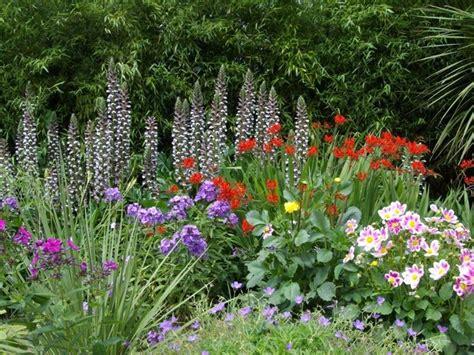 piante fiorite perenni da giardino piante perenni piante da giardino piante perenni arbusti