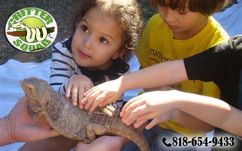 zoo reptile service