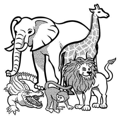 african animals lineart by frankes african line art